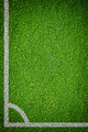 Natural green grass soccer field - PhotoDune Item for Sale