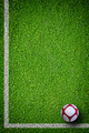 Soccer ball on green grass - PhotoDune Item for Sale