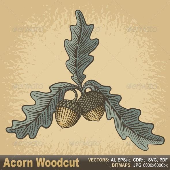 GraphicRiver Acorn Woodcut 6387303