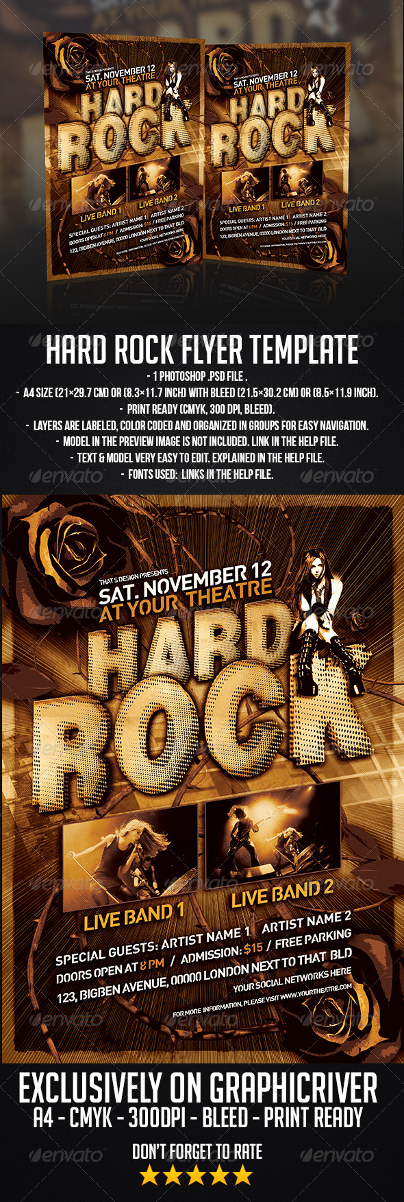 GraphicRiver Hard Rock Flyer Template 6363694
