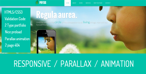 ThemeForest Physis One Page Responsive Template 6394992