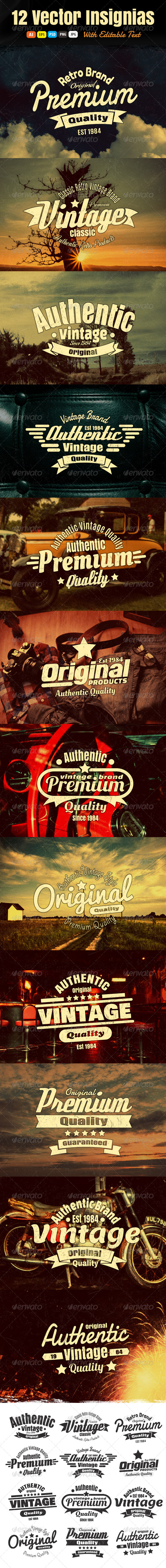 GraphicRiver 12 Vintage Insignias Or Labels 6398664