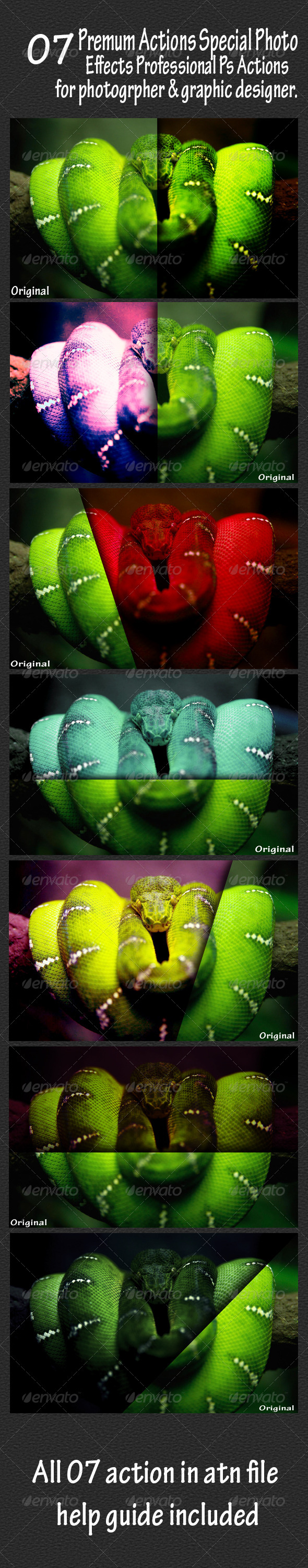 GraphicRiver 07 Premum Animal Actions Special Photo Effects Pr 6403481
