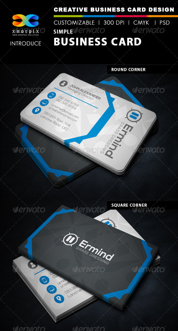 GraphicRiver Simple Business Card 6405514