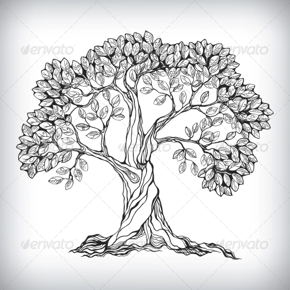 Hand drawn tree... Naturalistic Design Drawing