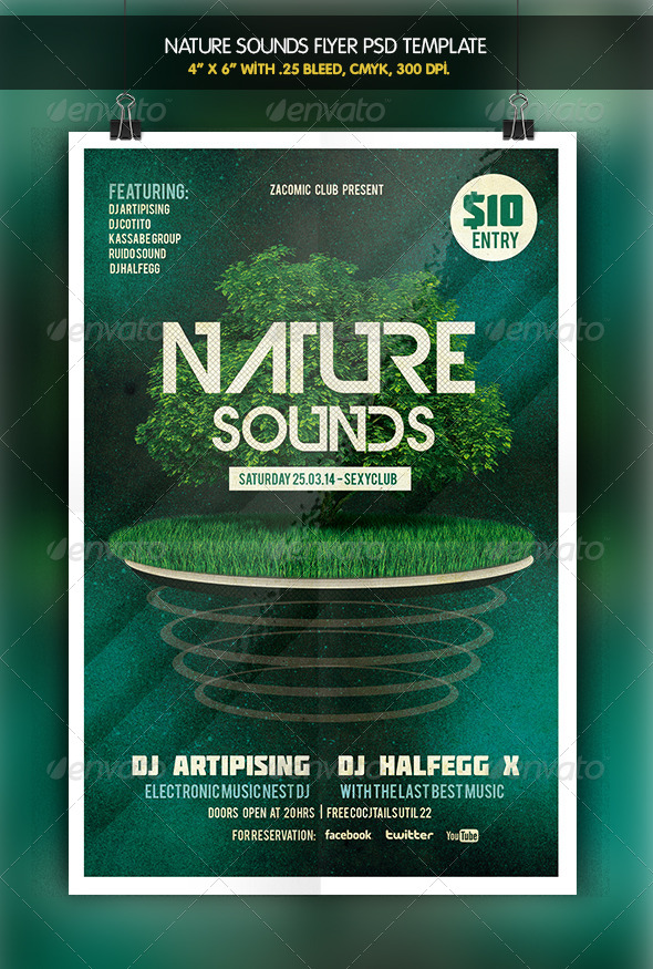 GraphicRiver Nature Sounds Party Flyer 6412581