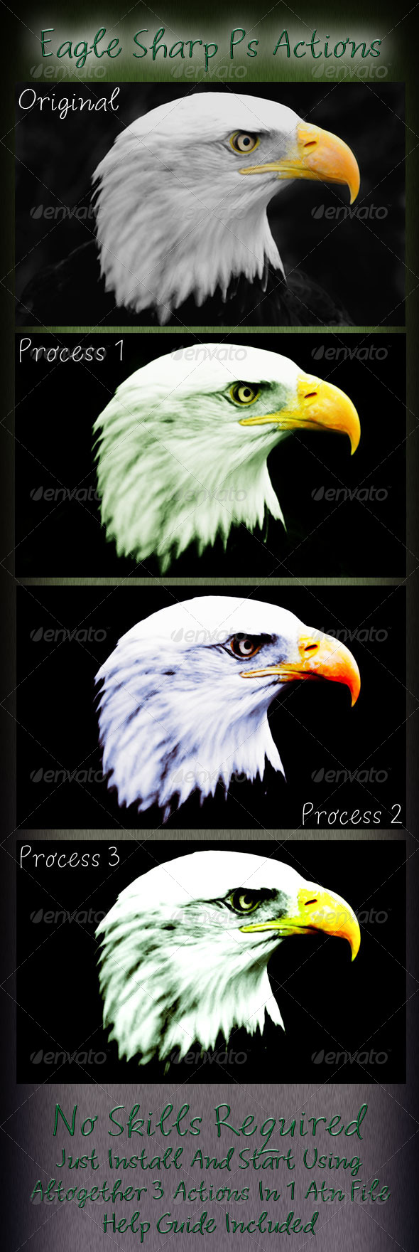 GraphicRiver Eagle Sharp Ps Actions 6418556