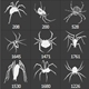 41 Photoshop Spiders & Web Brushes - GraphicRiver Item for Sale