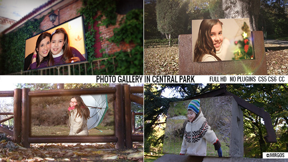 Photo Gallery In The Park