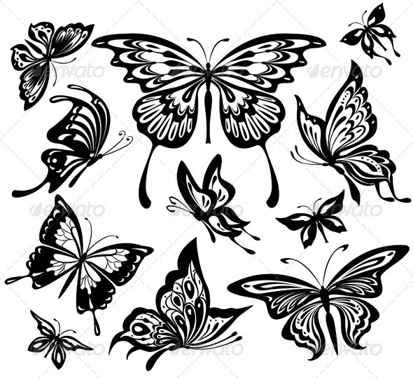 GraphicRiver Set of Black and White Butterflies 6423813