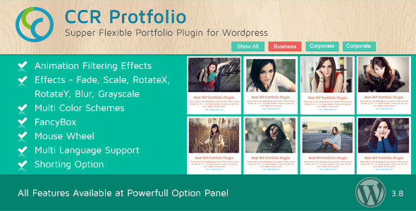 CodeCanyon CCR Portfolio Multi-Purpose WordPress Plugin 6430630
