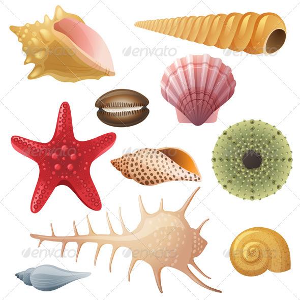 GraphicRiver Seashells Icons 6436764
