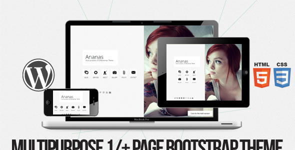 WordPress theme Ananas - Multi purpose 1/+ page Bootstrap Theme (Creative)