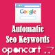 Opencart Auto Seo Keywords