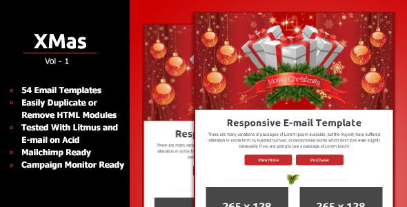ThemeForest Xmas Responsive Email Template 6446113