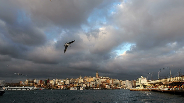 Pera and Galata Bridge with Boats and Seagulls