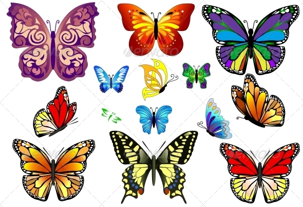 GraphicRiver Set of Colorful Realistic Isolated Butterflies 6452373