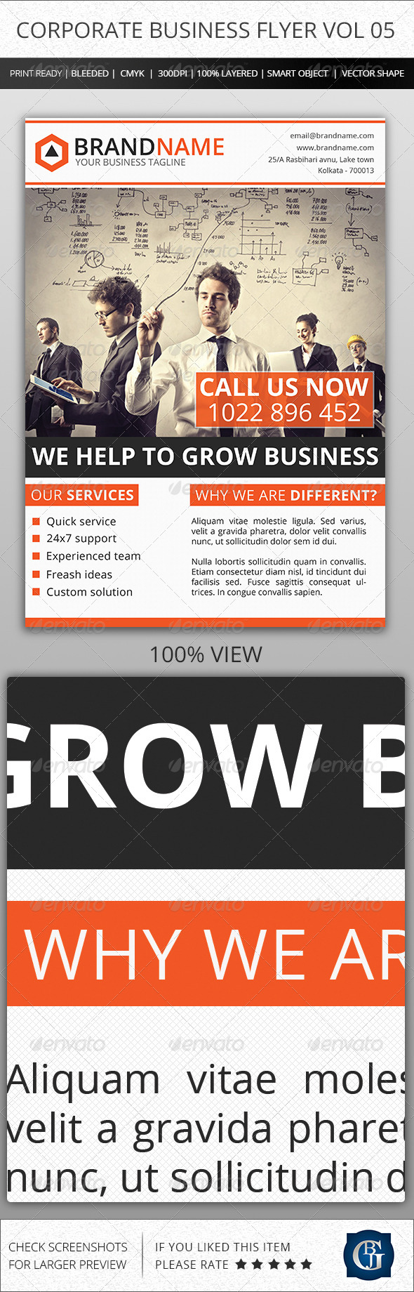 GraphicRiver Corporate Creative Business Flyer Vol 05 6462232