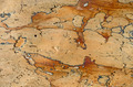 Wooden surface - PhotoDune Item for Sale