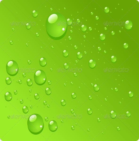 Water Drops on Green Background