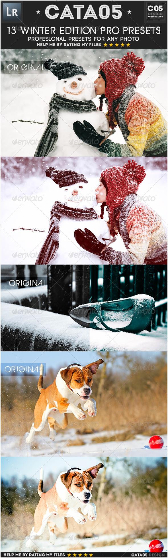 GraphicRiver 13 Winter Edition Pro Presets 6466312