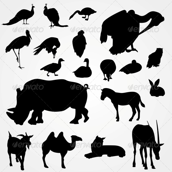 GraphicRiver Set of Silhouettes of Animals on Zoo 6470341