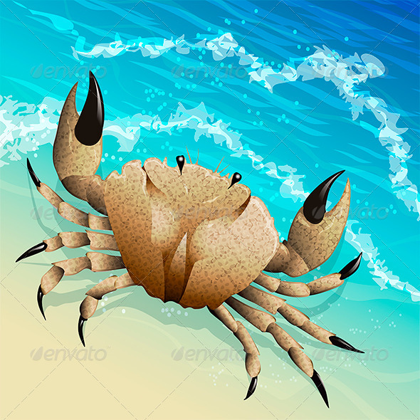 GraphicRiver The Crab 6471312