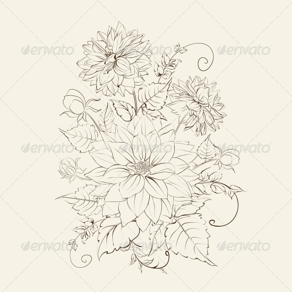 GraphicRiver Chrysanthemum Isolated Design 6477003