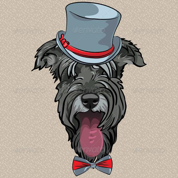 Hipster Dog Schnauzer