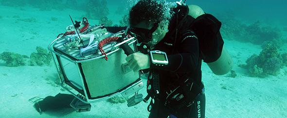 3d_unterwasser