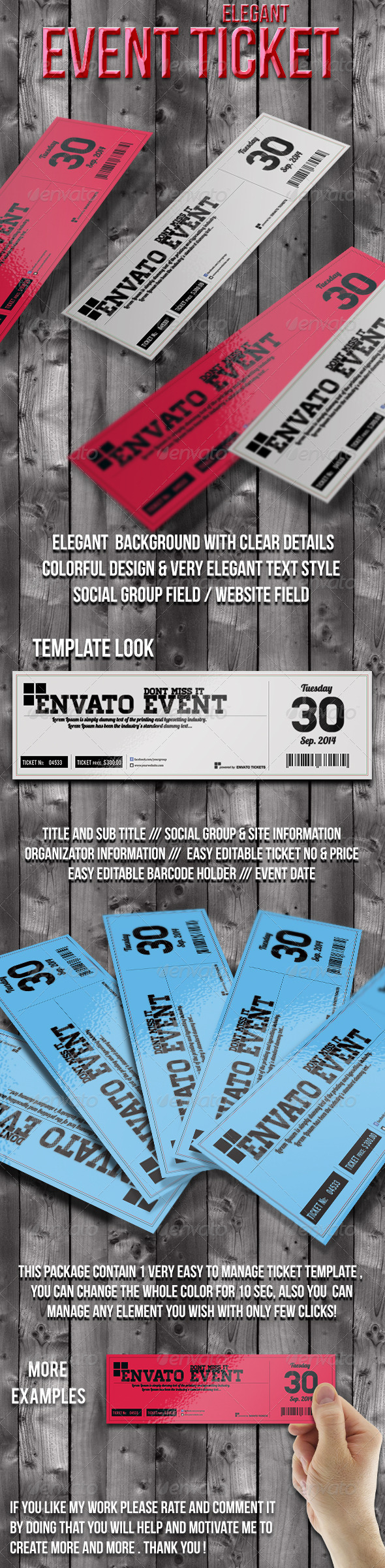 GraphicRiver Elegant ticket template 6453388