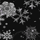 Snowflakes - VideoHive Item for Sale