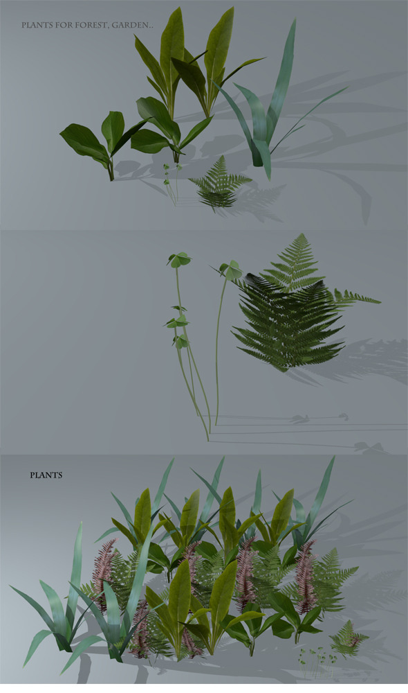 Low Poly Plants - 3DOcean Item for Sale