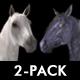 Sparking Arabesque - Full HD Loop - Pack 2 - 134