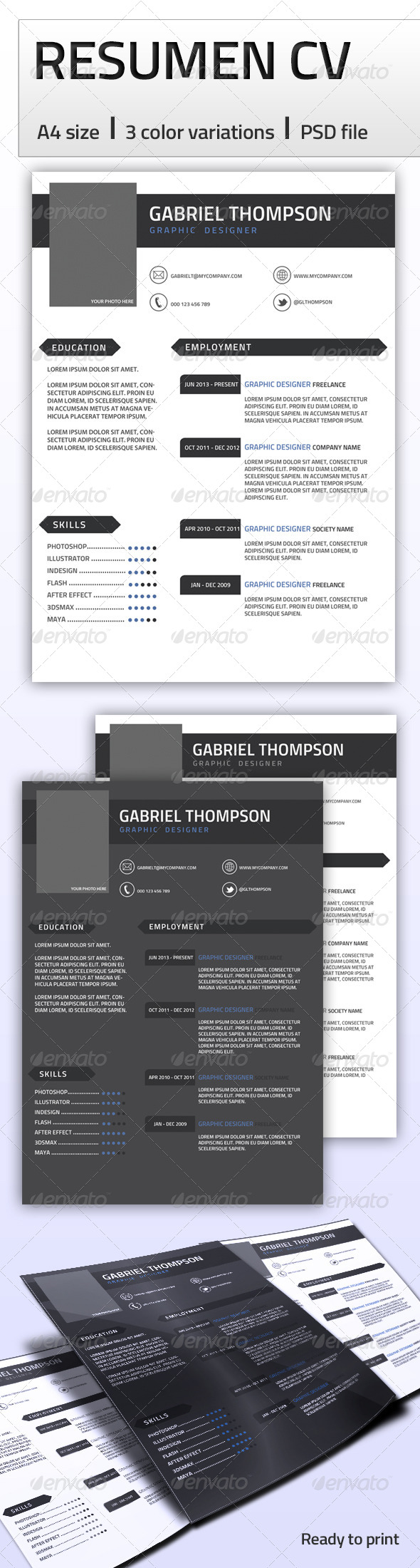 GraphicRiver Professional Resume A4 6488722
