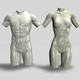 Male and Female Torso