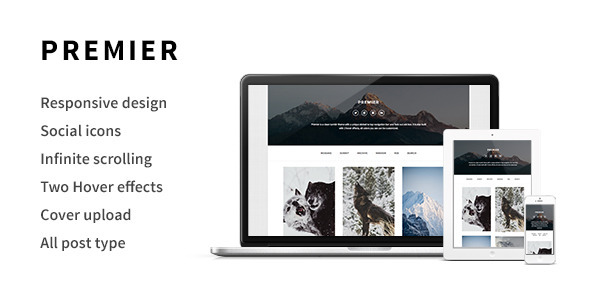 ThemeForest Premier A Responsive Tumblr Theme 6499579