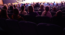 Audience at Show. Theatres, Cinemas, Concerts