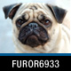furor6933