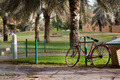Bicycle - PhotoDune Item for Sale