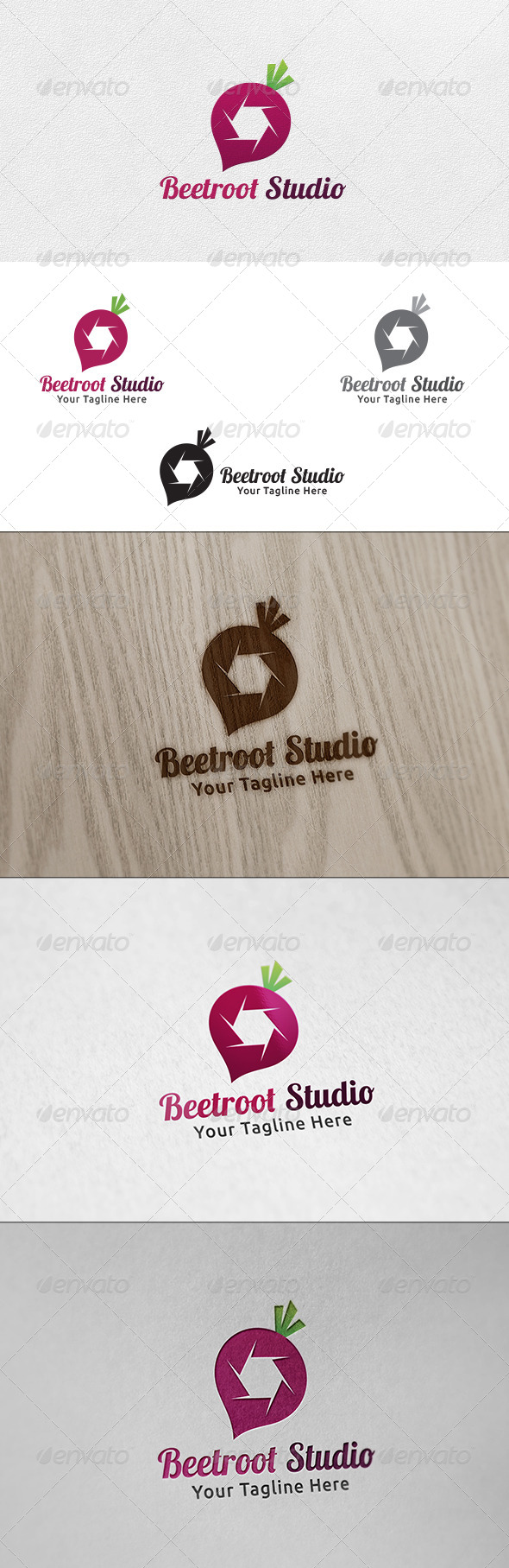 GraphicRiver Beetroot Studio Logo Template 6506280