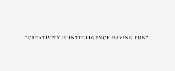 Inteligence-having-fun