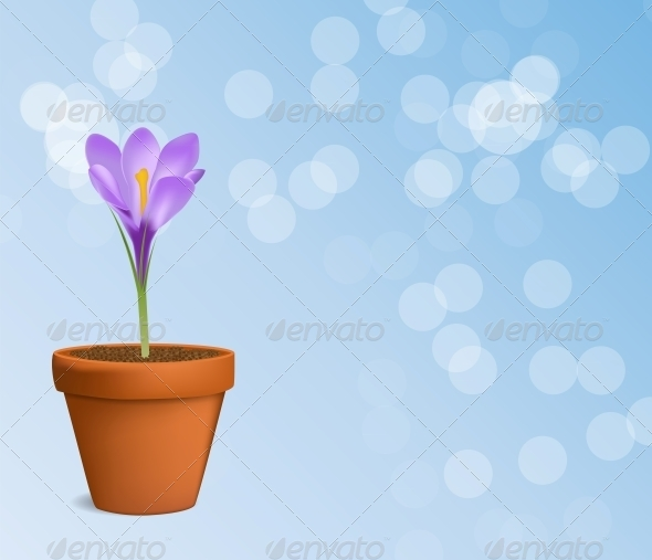 GraphicRiver Vector Illustration of Crocus Flower 6510015