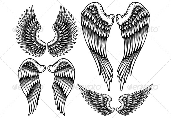 GraphicRiver Set of Wings 6511408