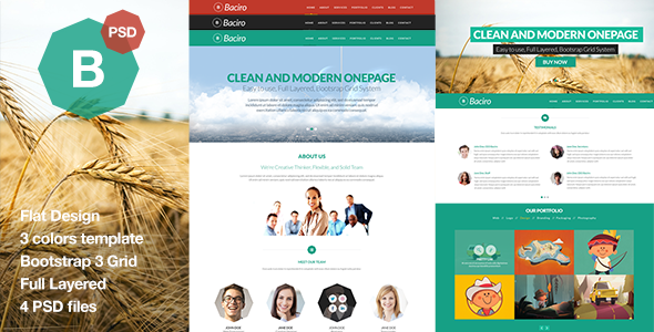 ThemeForest Baciro Creative One Page PSD Template 6514467
