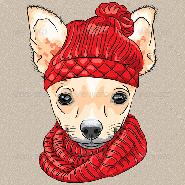 GraphicRiver Cartoon Hipster Chihuahua Smiling 6514904