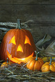 Carved jack-o-lantern lit for Halloween - PhotoDune Item for Sale