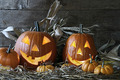 Halloween pumpkins in the barn - PhotoDune Item for Sale