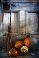 Halloween night - PhotoDune Item for Sale