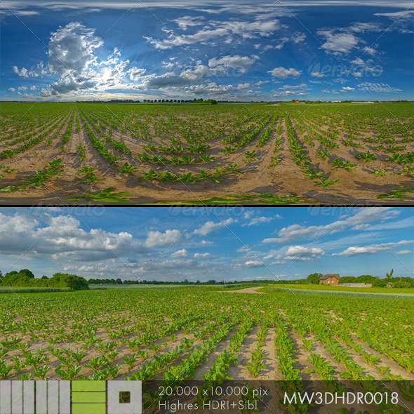 3DOcean MW3DHDR0018 Agriculture Fields Summersky 6519568
